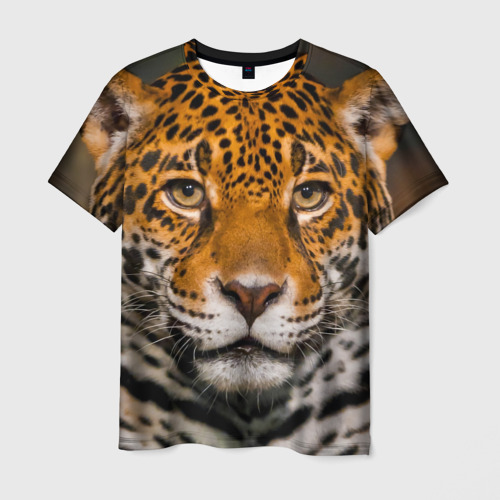 Мужская футболка 3D