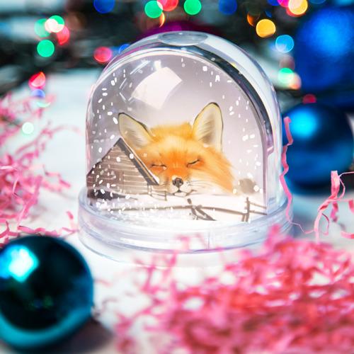 Водяной шар со снегом  Фото 03, Сон