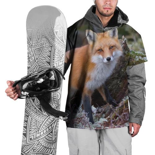 Накидка на куртку 3D  Фото 01, Лес
