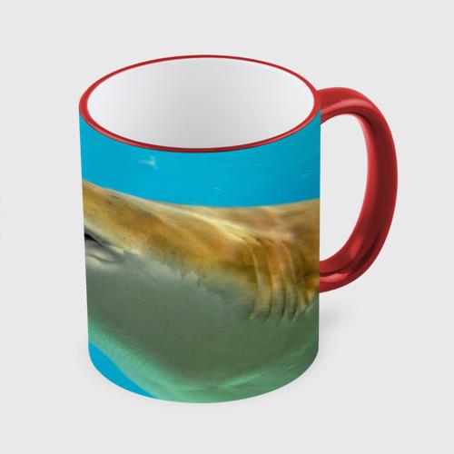 Кружка с полной запечаткой Тигровая акула