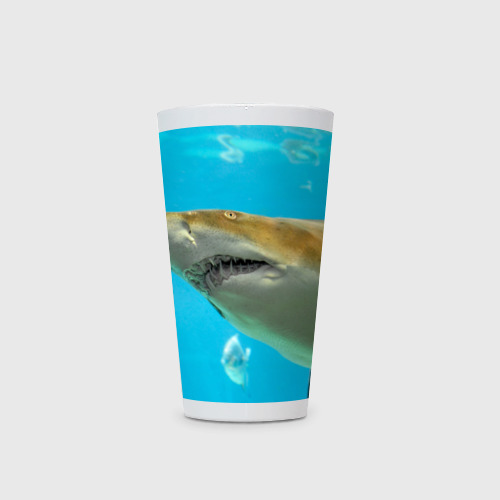 Кружка Латте  Фото 03, Тигровая акула