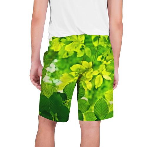 Мужские шорты 3D  Фото 02, Зелёные листья
