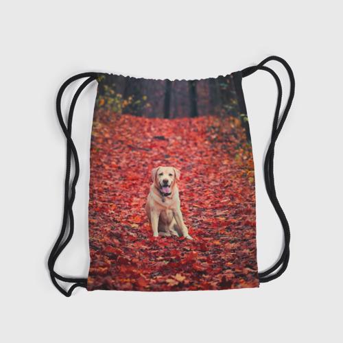 Рюкзак-мешок 3D  Фото 04, Red