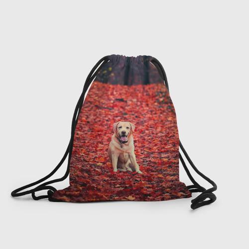 Рюкзак-мешок 3D  Фото 01, Red