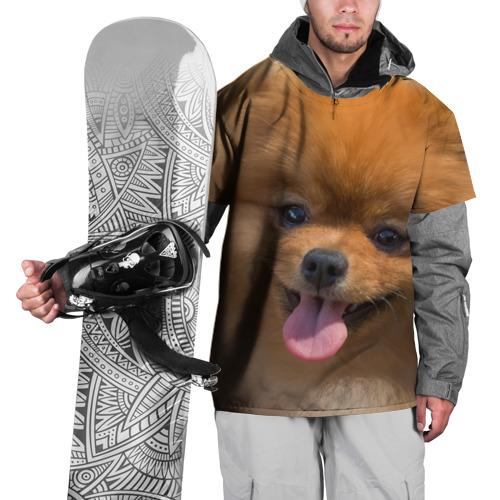 Накидка на куртку 3D  Фото 01, Милашка