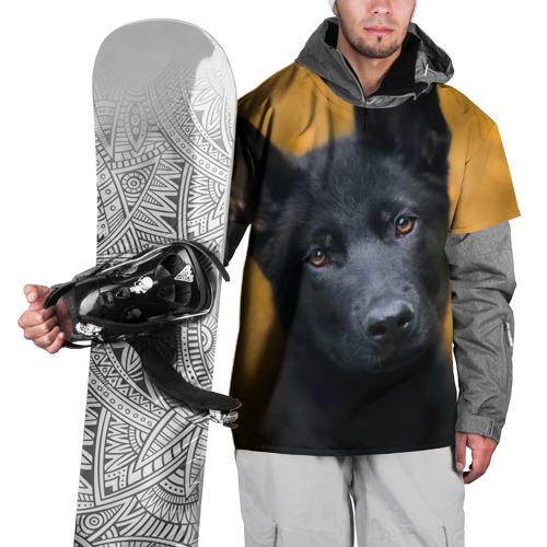 Накидка на куртку 3D  Фото 01, Doggy