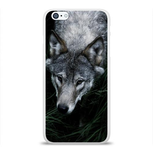 Чехол для Apple iPhone 6Plus/6SPlus силиконовый глянцевый  Фото 01, Волк в траве