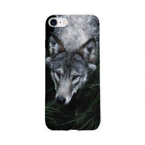 Чехол для Apple iPhone 8 силиконовый глянцевый  Фото 01, Волк в траве