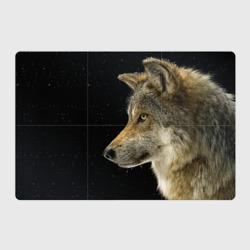 Волк и звезды