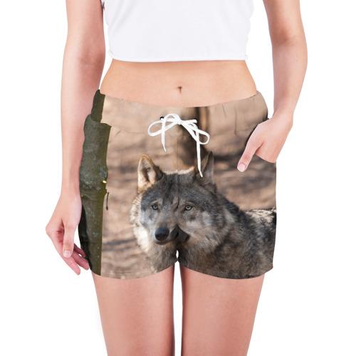 Женские шорты 3D  Фото 03, Серый волк