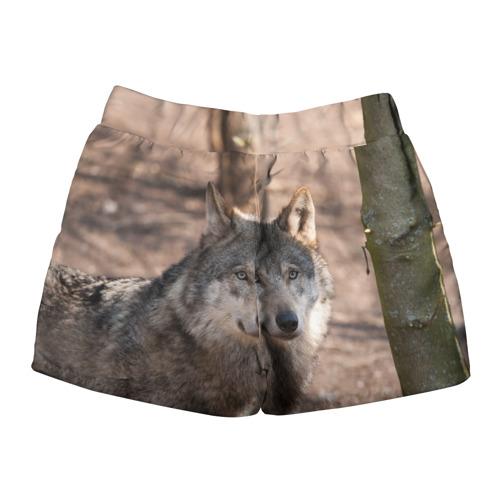 Женские шорты 3D  Фото 02, Серый волк