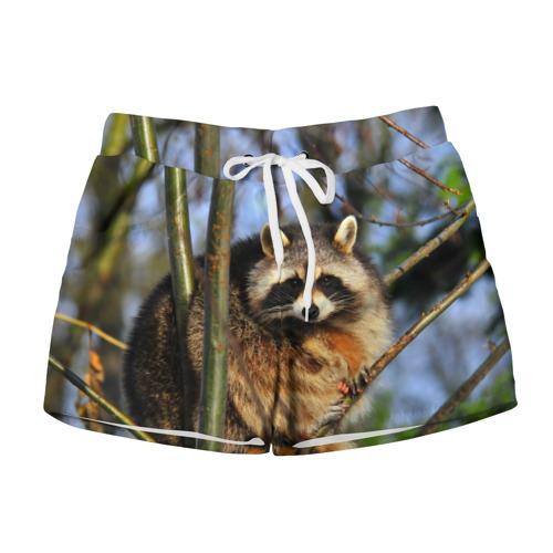 Женские шорты 3D  Фото 01, Енот