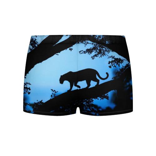 Мужские трусы 3D  Фото 02, Чёрная пантера