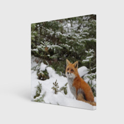 Лиса в зимнем лесу