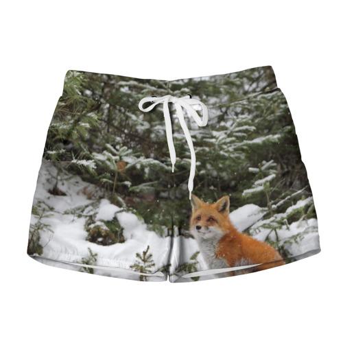 Женские шорты 3D Лиса в зимнем лесу