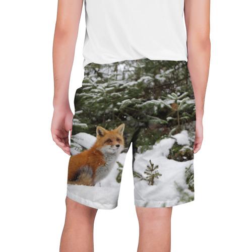 Мужские шорты 3D  Фото 02, Лиса в зимнем лесу