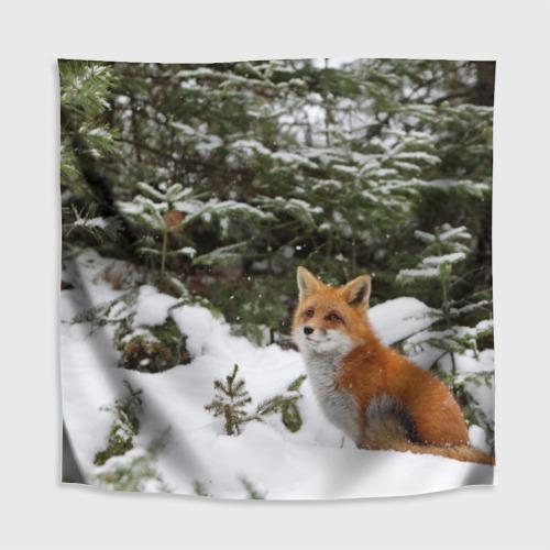 Скатерть 3D  Фото 02, Лиса в зимнем лесу