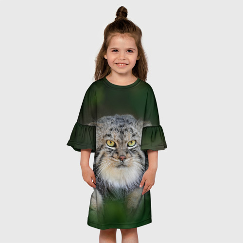 Детское платье 3D  Фото 01, Манул