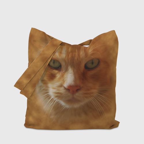 Сумка 3D повседневная  Фото 04, Рыжий котик