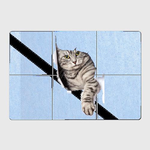 Кот прорвался