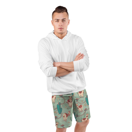 Мужские шорты 3D спортивные  Фото 05, Альпаки