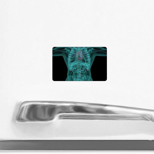 Магнит виниловый Visa  Фото 02, рентген человека