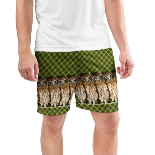 Мужские шорты 3D спортивные  Фото 03, Банда сов