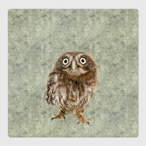 Магнитный плакат 3Х3 Удивленная сова