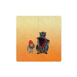 Енот, сова и аккордион