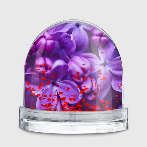 Водяной шар  Фото 02, Лучшая в мире бабуля