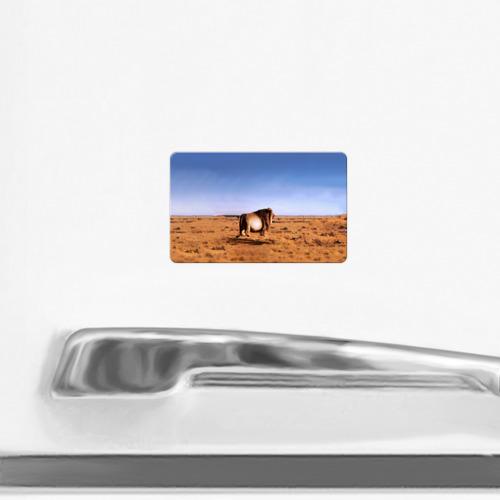 Магнит виниловый Visa  Фото 02, Толстый лев