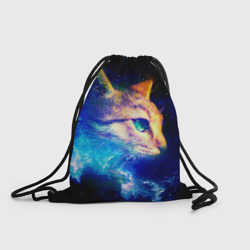 Звездный кот