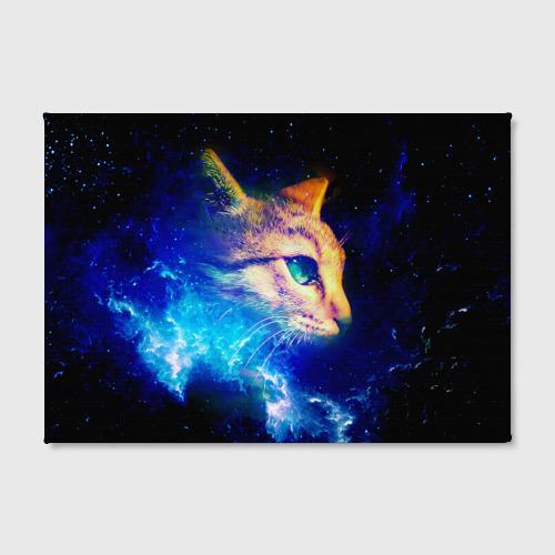 Холст прямоугольный  Фото 02, Звездный кот