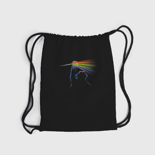Рюкзак-мешок 3D  Фото 04, Pink Floyd Cookie Monster