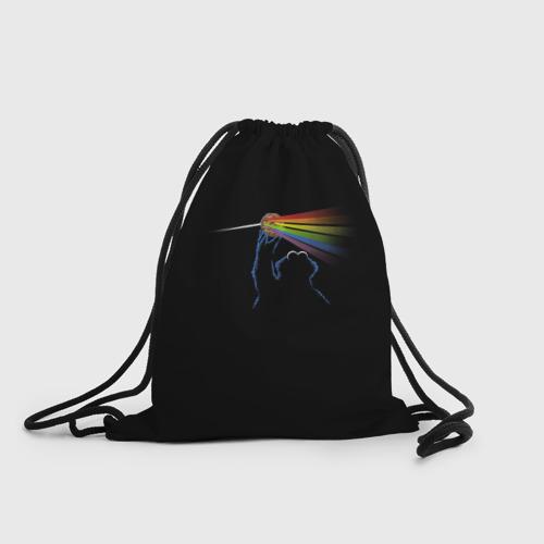 Рюкзак-мешок 3D  Фото 01, Pink Floyd Cookie Monster