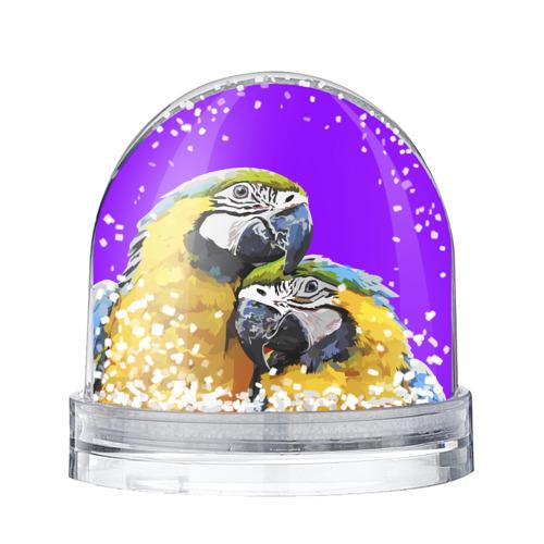 Водяной шар со снегом  Фото 01, Попугайчики