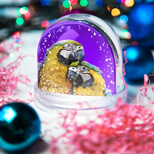 Водяной шар со снегом  Фото 03, Попугайчики