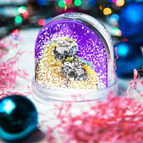 Водяной шар со снегом  Фото 04, Попугайчики