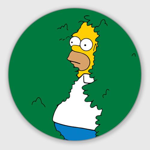 Гомер фото 0