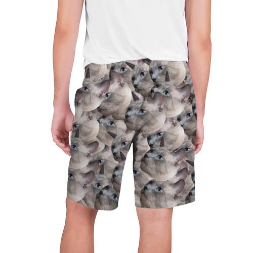 Мужские шорты 3D  Фото 02, Котики