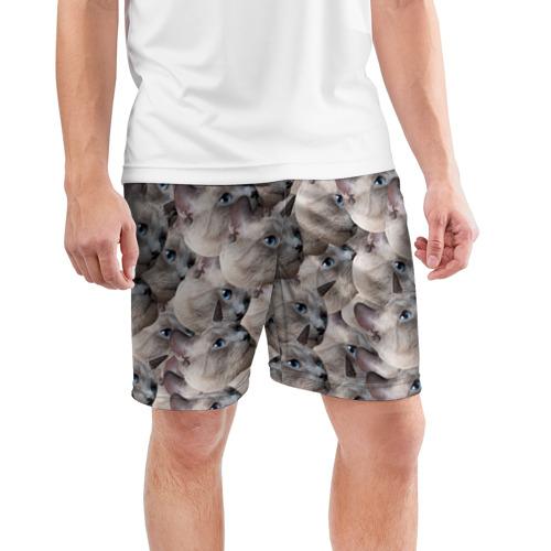 Мужские шорты 3D спортивные  Фото 03, Котики