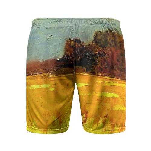 Мужские шорты 3D спортивные  Фото 02, Картина маслом