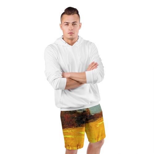 Мужские шорты 3D спортивные  Фото 05, Картина маслом