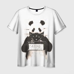 Панда в не закона