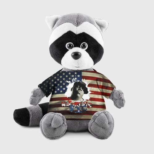 Енотик в футболке 3D  Фото 01, The Notorious B.I.G.  флаг США
