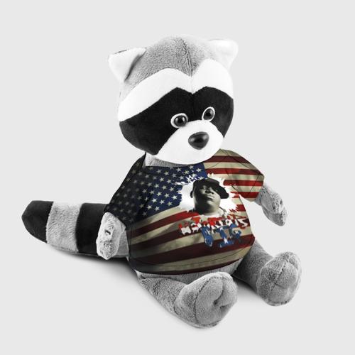 Енотик в футболке 3D  Фото 03, The Notorious B.I.G.  флаг США