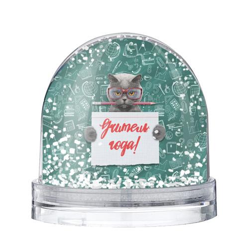 Водяной шар со снегом Учитель года!