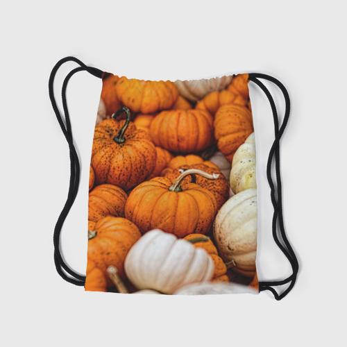 Рюкзак-мешок 3D  Фото 05, тыквы