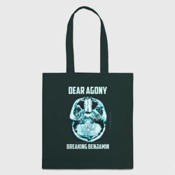 Dear Agony, Breaking Benjamin