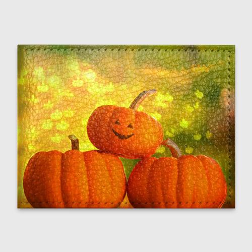 Обложка для студенческого билета  Фото 01, Pumpkin